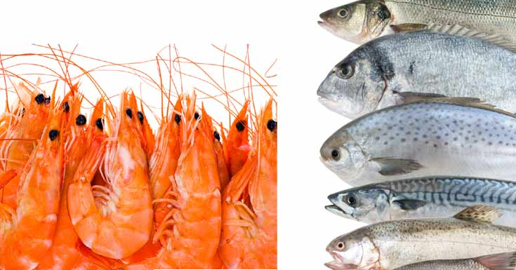 Fish oil vs krill oil benefits which one is better and for Whats fish oil good for